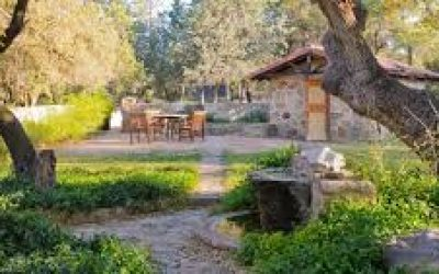 El Rancho Robles yard & wall