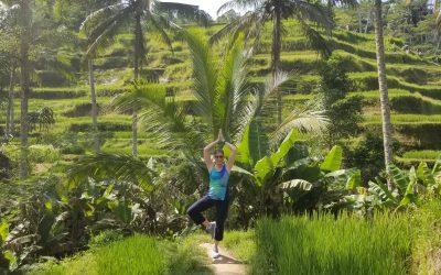 Yoga Bali Rice Terraces